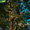 Luzes de Natal agradáveis da decoração ao ar livre da árvore do diodo emissor de luz para árvores