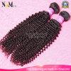 Tessuto crespo mongolo dei capelli ricci dell'accessorio di modo delle donne