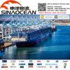 Frete de oceano FCL de Serivce do transporte da logística do transitário o melhor LCL