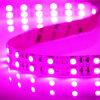 Streifen-Leuchten Fitas LED LED RGB-SMD5050 LED Leuchten