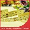 SMD5050 600LEDs 144W Flexible IP20 C.V 24V LED Tape Light