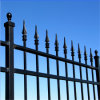 Polvere Coated Square Tube Wrought Iron Fence per Home
