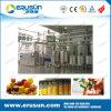 Linea di trasformazione automatica del succo di frutta dell'acciaio inossidabile