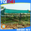 Tissu 100% matériel d'ombre de Sun de vert de HDPE de Vierge