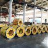 310 почистил катушки щеткой нержавеющей стали