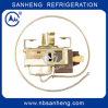 Thermostat capillaire de qualité (le Groupe des Dix)