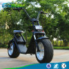 18 a gordura da roda 1000W Harley da polegada dois cansa o trotinette elétrico, trotinettes elétricos de Citycoco