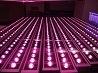 Sell caldo Waterproof LED Grow Light Bar 36W per Indoor Plants