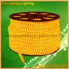 Luce di striscia di alta qualità LED 100m/PCS 110V/220V