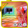 Laminated coloré Glass avec du CE/ISO9001/ccc