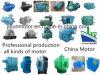 3.3kv/5.5kv/6.6kv/10kv/11kv Low en High Voltage Asynchronous AC Electric Induction Motor