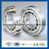 Qualität Cylindrical Roller Automotive Bearing N253e für Auto