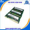 Ноутбук Память RAM DDR2 4GB 800MHz PC6400 200pin (DDR2 4GB)
