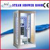 새로운 디자인 증기 샤워실 (AT-0220)