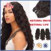 Remyの加工されていないインドの毛、インドの寺院の毛、人間の毛髪のよこ糸