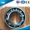 China-Fabrik-gute Qualitätsrochen, der das tiefe Nut-Kugellager 6405 trägt für Waschmaschine trägt