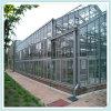 유리제 위원회 설치를 위한 다중 경간 녹색 집