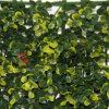 L'EDERA artificiale di Sunwing pianta la rete fissa dell'erba del giardino