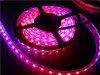 Flexibles wasserdichtes DC5V Ws2812b RGB LED Licht