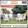 粉の上塗を施してあるアルミニウム庭の家具(SC-B1016)