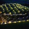 اثنان لون يشعل شبكة خارجيّ [لد] حديقة زخرفة أضواء