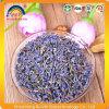自然な乾燥されたラベンダーの花のハーブティー