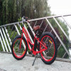 대중적인 E 자전거 뚱뚱한 타이어 500W (RSEB-506)