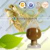 Extracto el 40% de la hoja del Ginseng de Panax ULTRAVIOLETA