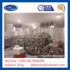 産業フリーザー部屋産業冷却装置フリーザーシステムの歩行