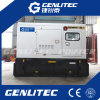 Bestes leises Generator-Set des Preis-16kw/20kVA Perkins (GPP20S)