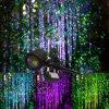 Luz impermeável ao ar livre da árvore do jardim do laser da estrela da noite do RGB