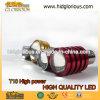 Lampadine bianche di alto potere LED del xeno luminoso eccellente T10, corredo di aggiornamento per i fari o luci di nebbia
