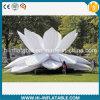 최신 Sale Event, Stage 의 정원, Sale를 위한 Park Decoration Inflatable Flower No. 12419