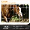 Pferden-Vieh Australien-Vieh-Zaun-/New-Seeland