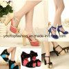 Leer Sandals van Sandals van de Dames van de Korting van Sandals van de Hiel van vrouwen het Hoge