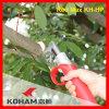 Koham lavora la batteria Pruners di taglio dei rami dell'albero del pecan