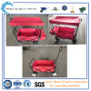 Foldable colorido Tool Cart Tc4208 com Awning