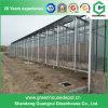 Qualitäts-ausgeglichenes Glas-Gewächshaus-Installationssätze für Tomate