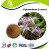 Extrait normal pur organique d'Epimedium d'offre chinoise de fournisseur d'Acegem avec 5%-98% Icariin