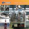 Machine de remplissage à chaud de l'eau de noix de coco de bouteille en verre