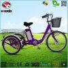 안전 스쿠터 LCD 디스플레이를 가진 전기 세발자전거 3 바퀴 자전거