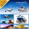 Serviço da logística do transporte de Porfessional de Shenzhen/Shanghai/Ningbo/Guangzhou, China a Nigéria