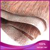 Trama brasiliana della pelle dell'unità di elaborazione dei capelli umani del Virgin di alta qualità