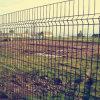Загородка сваренной сетки PVC горячего сбывания покрытая гальванизированная