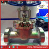 Api 6D Satinless Steel Flanged Gate Valve