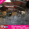 高温換気の管の小型の産業屋根の排気の軸ブロアのファンマレーシア