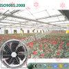 온실을 설치하는 꽃을%s 천장 유형 배출 냉각팬