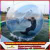 Rolo enchido do gramado da caminhada da esfera da bolha garrafa de água inflável Running