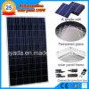 250W Polycrystalline PV Solar Module