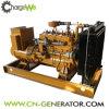 중국 최고 상표 Cw 50gfz 휴대용 가스 발전기 또는 작은 가스 발전기